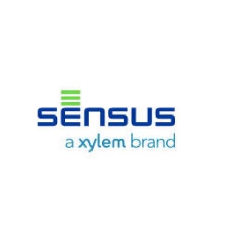 """Sensus (Rockwell-Equimeter) 121-62-598-50 121-16-4"""" Repair Kit"""