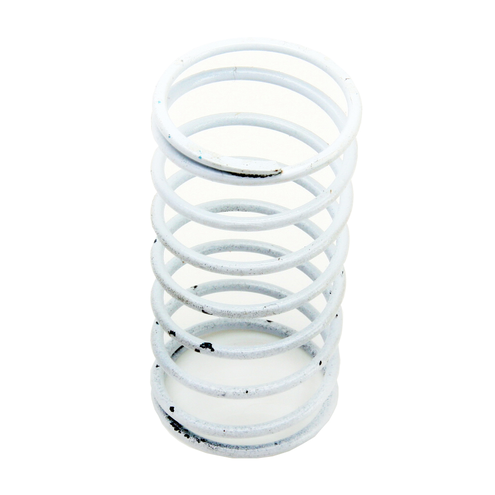 Sensus (Rockwell-Equimeter) 138-18-021-01 White Spring For RPC 1-5 PSI