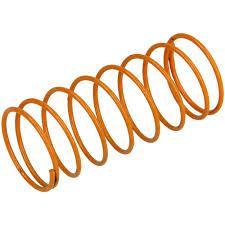 Actaris 762341 Orange Adjustment Spring