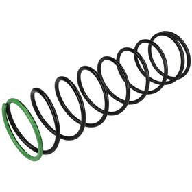 Dungs 229-907 Regulator Spring Black 24 to 40 W.C. For FRS 5125