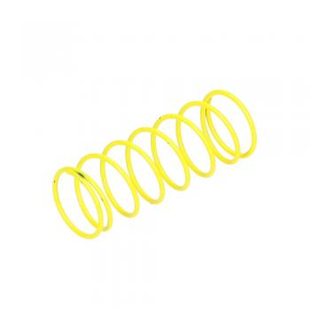 Dungs 229-838 Regulator Spring Yellow 12 to 28 W.C. For FRS 707/507